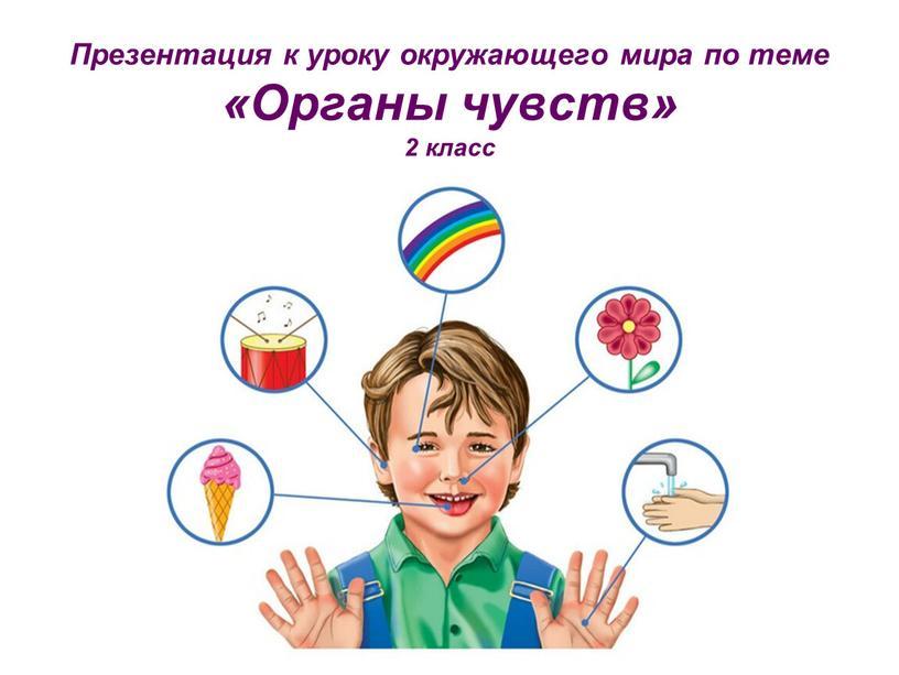 Презентация к уроку окружающего мира по теме «Органы чувств» 2 класс