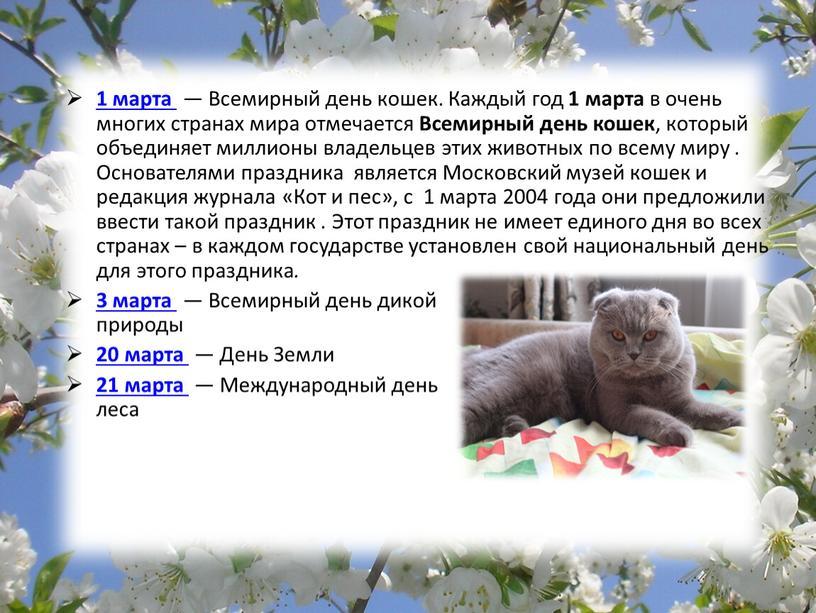 Всемирный день кошек. Каждый год 1 марта в очень многих странах мира отмечается