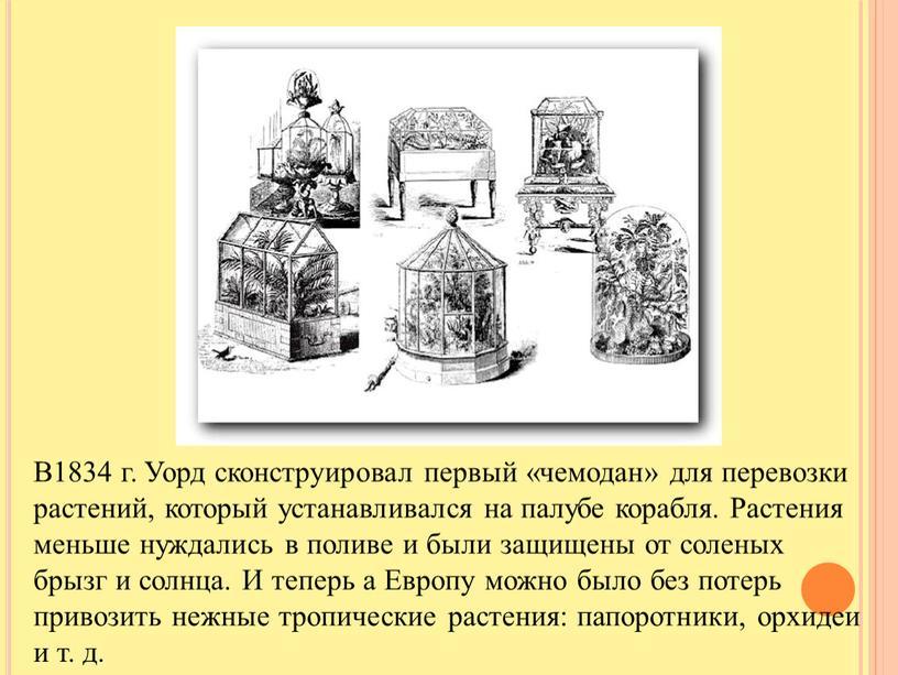 В1834 г. Уорд сконструировал первый «чемодан» для перевозки растений, который устанавливался на палубе корабля