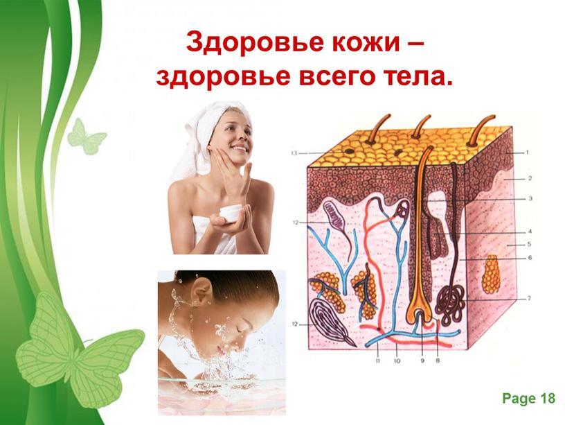 Здоровье кожи – здоровье всего тела
