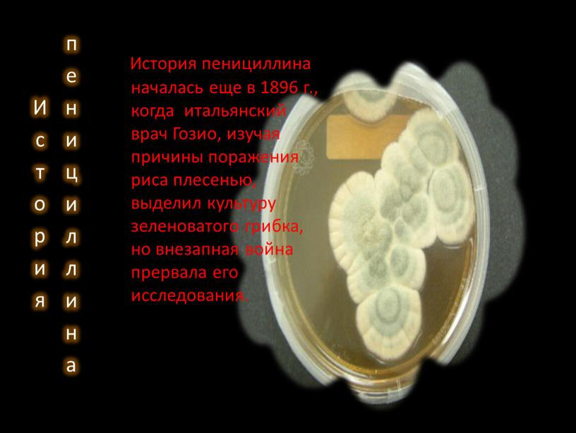 История пенициллина История пенициллина началась еще в 1896 г