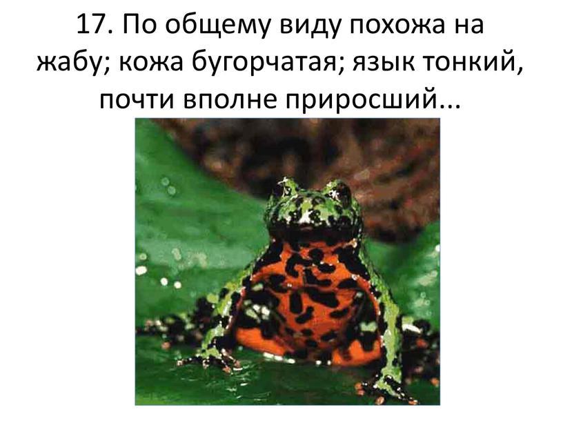 По общему виду похожа на жабу; кожа бугорчатая; язык тонкий, почти вполне приросший