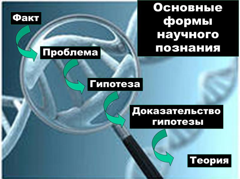 Факт Гипотеза Доказательство гипотезы