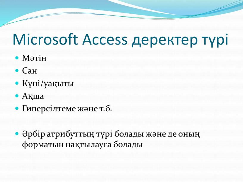 Microsoft Access деректер түрі