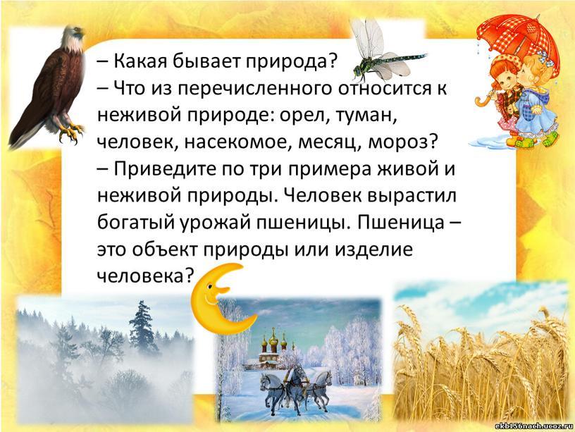 Какая бывает природа? – Что из перечисленного относится к неживой природе: орел, туман, человек, насекомое, месяц, мороз? –
