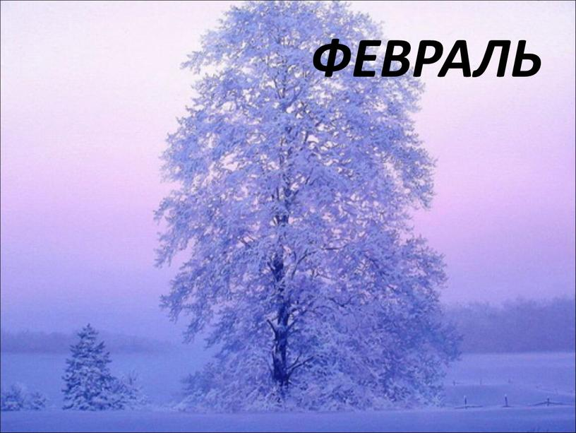 ФЕВРАЛЬ