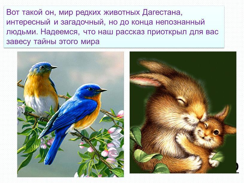 ТАБЛО 19 Вот такой он, мир редких животных