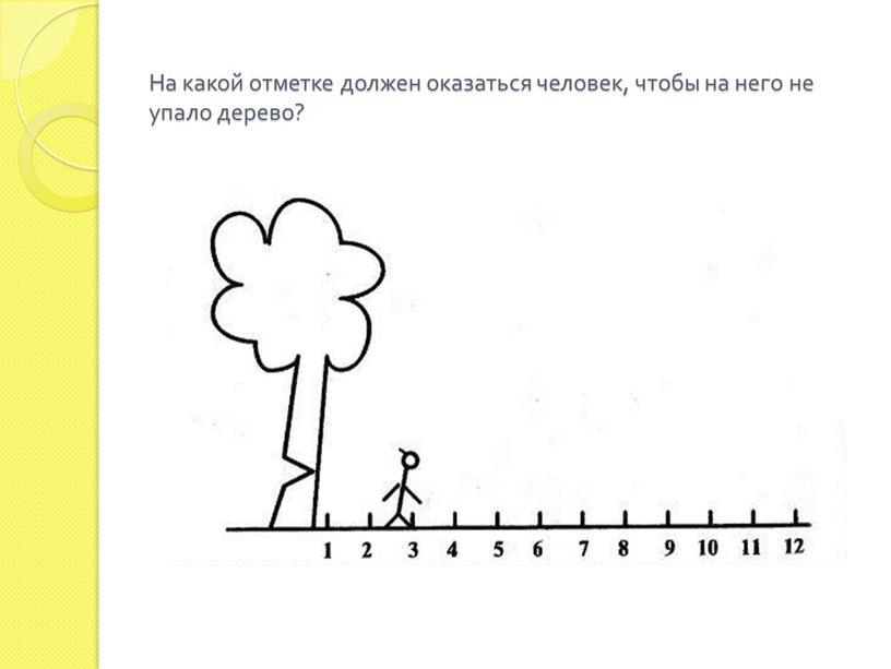На какой отметке должен оказаться человек, чтобы на него не упало дерево?