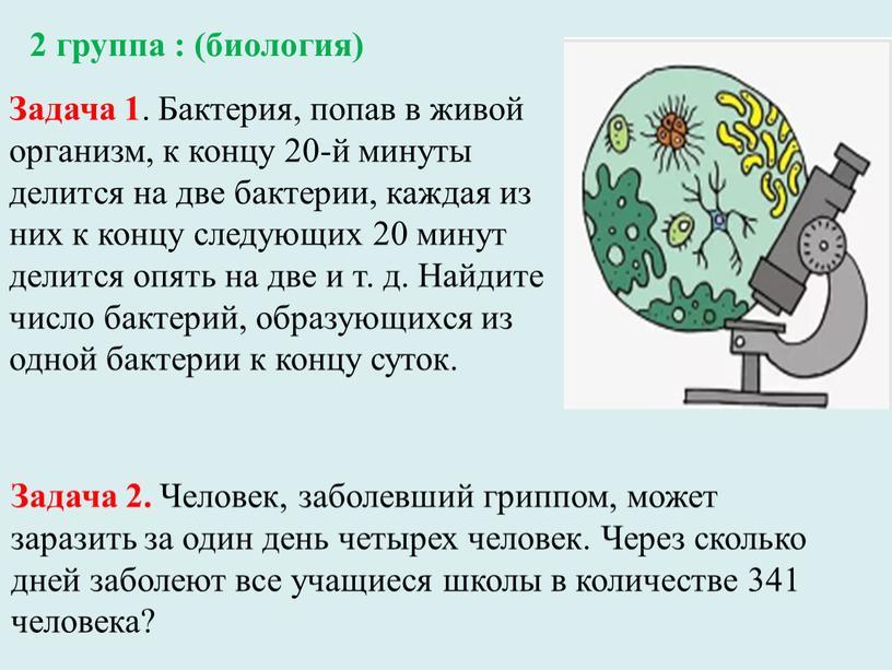 Задача 1 . Бактерия, попав в живой организм, к концу 20-й минуты делится на две бактерии, каждая из них к концу следующих 20 минут делится…