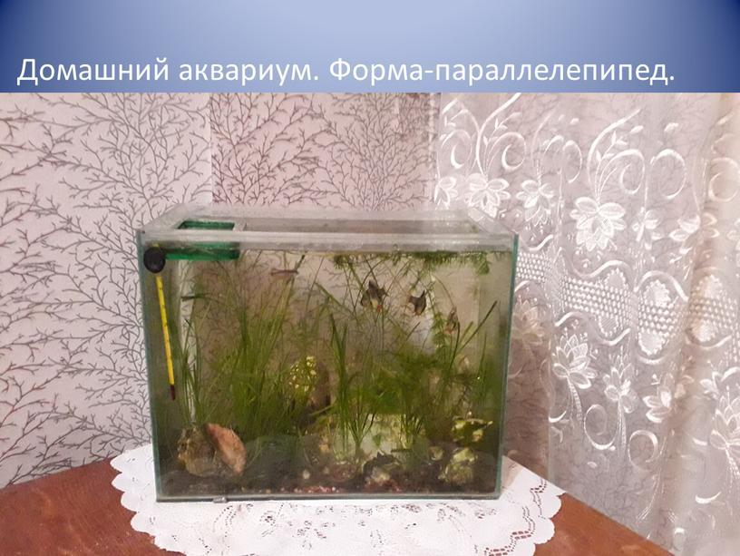 Домашний аквариум. Форма-параллелепипед