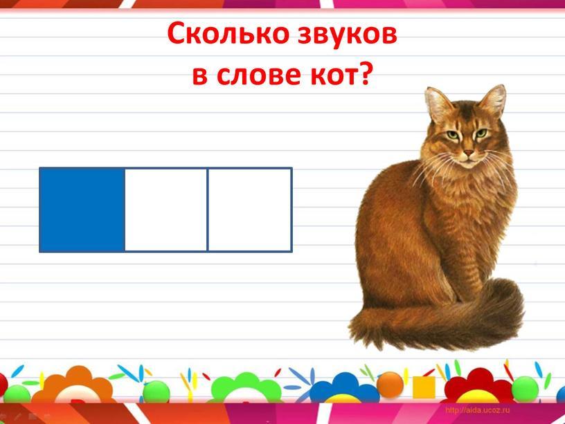 Сколько звуков в слове кот?