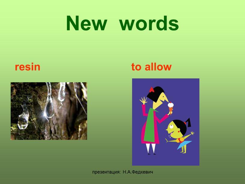 Н.А.Федкевич New words resin to allow