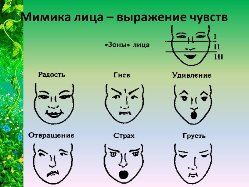 Мимика лица – выражение чувств