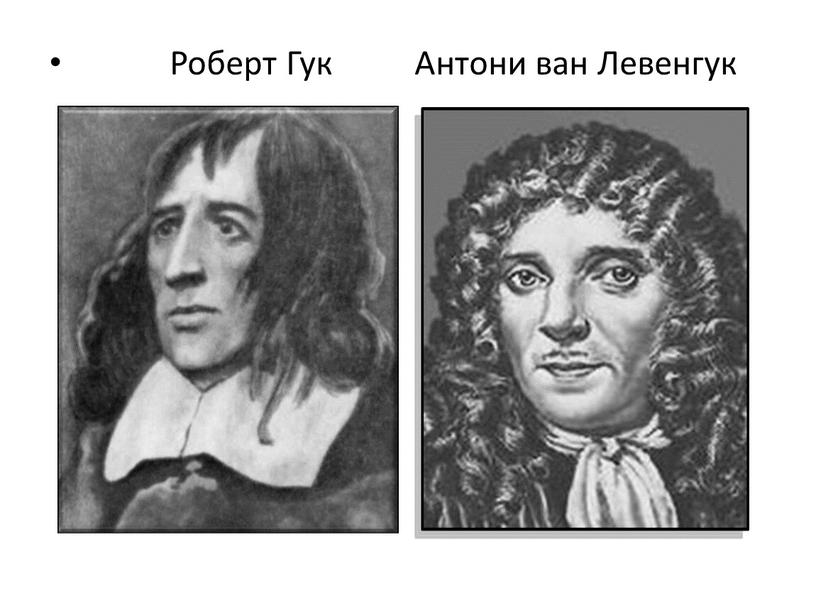 Роберт Гук Антони ван