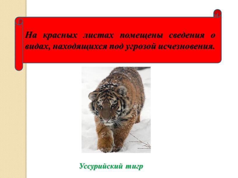 На красных листах помещены сведения о видах, находящихся под угрозой исчезновения
