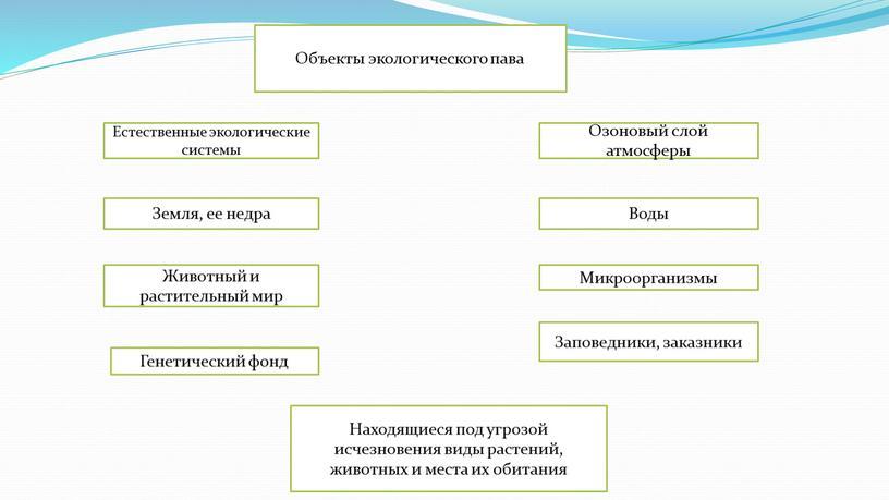 Объекты экологического пава Естественные экологические системы