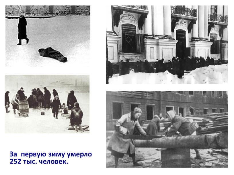 За первую зиму умерло 252 тыс