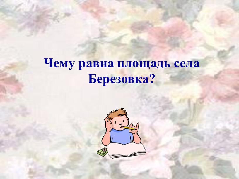 Чему равна площадь села Березовка?