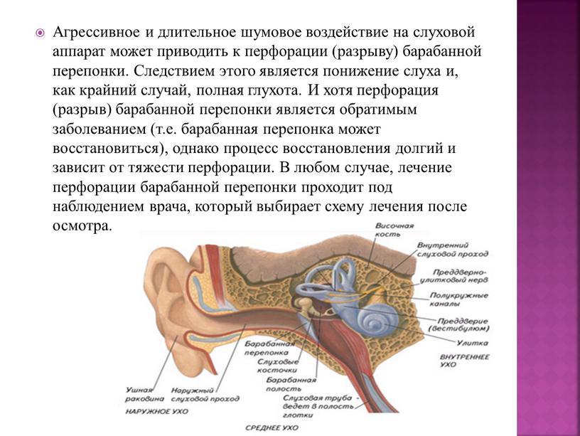 Агрессивное и длительное шумовое воздействие на слуховой аппарат может приводить к перфорации (разрыву) барабанной перепонки