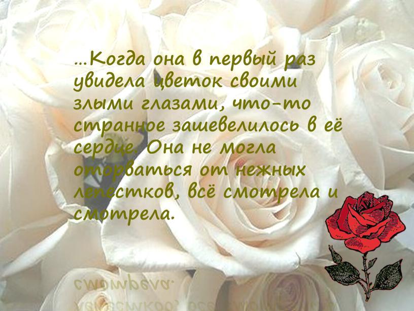 Когда она в первый раз увидела цветок своими злыми глазами, что-то странное зашевелилось в её сердце