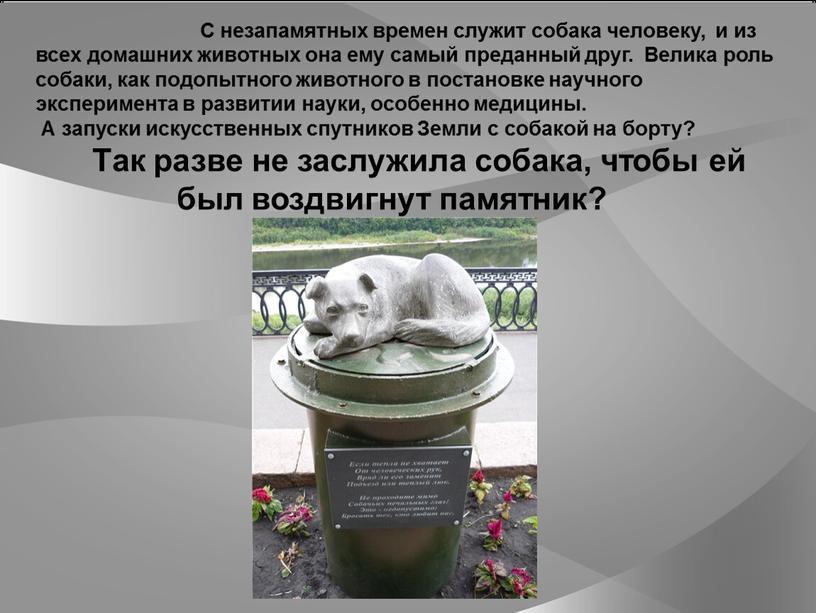 С незапамятных времен служит собака человеку, и из всех домашних животных она ему самый преданный друг