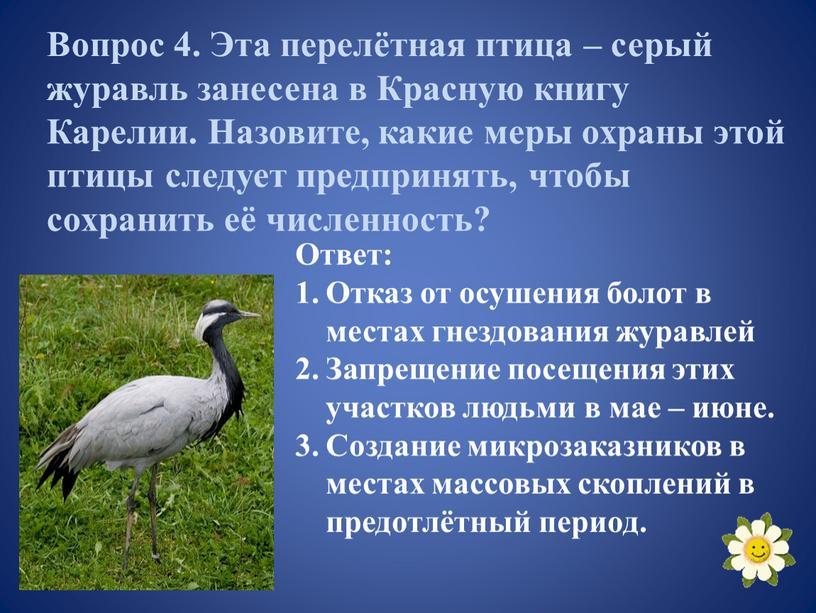 Вопрос 4. Эта перелётная птица – серый журавль занесена в