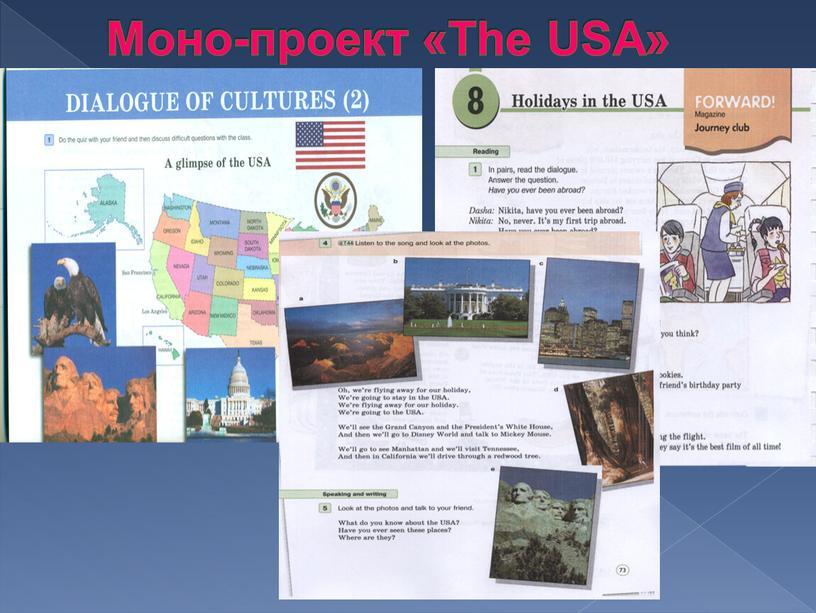 Моно-проект «The USA»