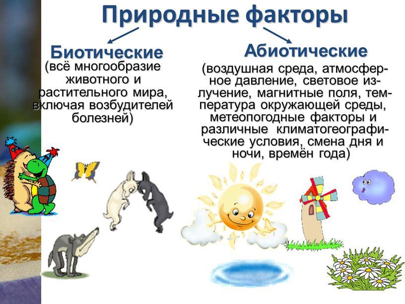 Природные факторы Биотические Абиотические (всё многообразие животного и растительного мира, включая возбудителей болезней) (воздушная среда, атмосфер- ное давление, световое из- лучение, магнитные поля, тем- пература…