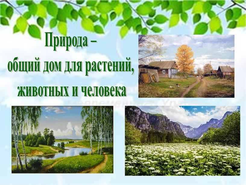 Природа – общий дом для растений, животных и человека