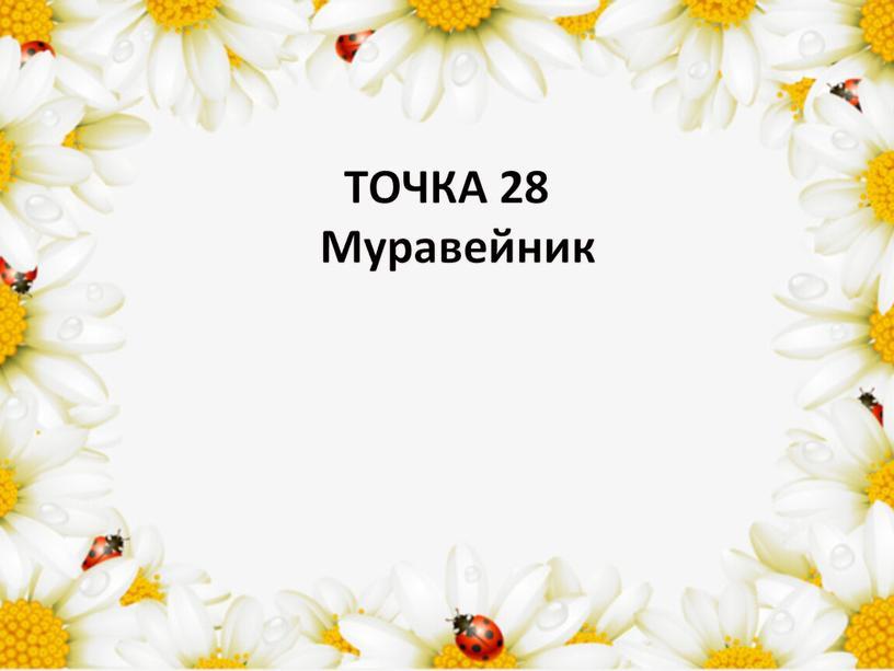 ТОЧКА 28 Муравейник