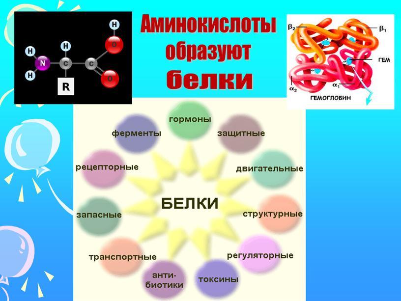 Аминокислоты образуют белки