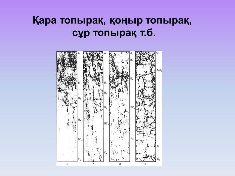 Қара топырақ, қоңыр топырақ, сұр топырақ т.б.