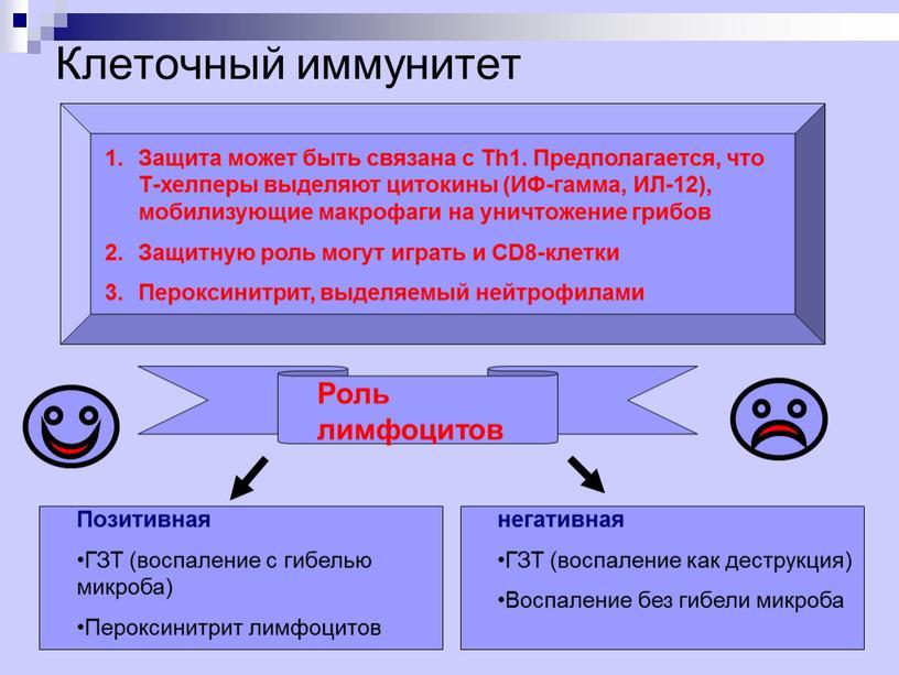 Клеточный иммунитет Защита может быть связана с