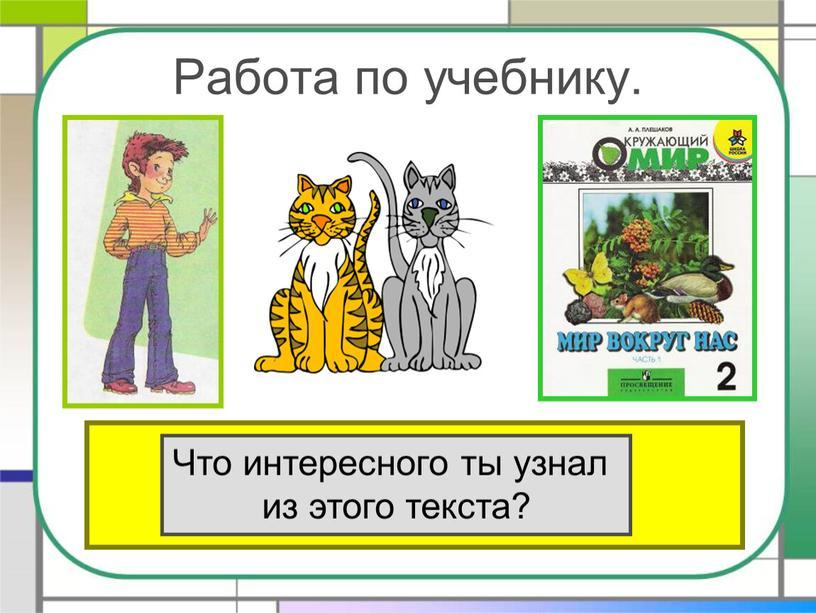Работа по учебнику. Прочитай текст «Кошки» в учебнике на стр
