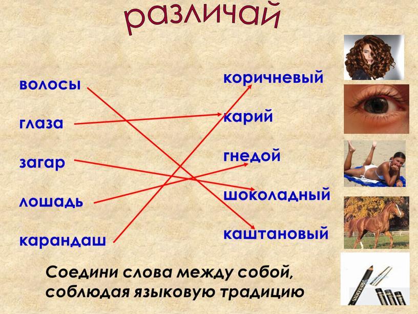 Соедини слова между собой, соблюдая языковую традицию