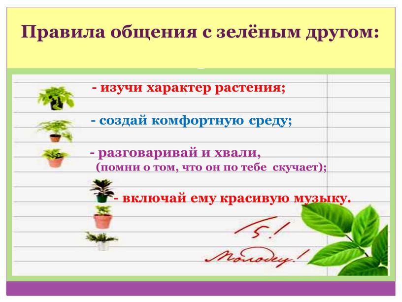 Правила общения с зелёным другом: - изучи характер растения; - создай комфортную среду; - разговаривай и хвали, (помни о том, что он по тебе скучает);…