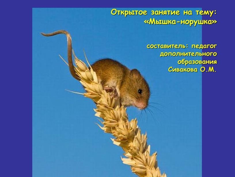 Открытое занятие на тему: «Мышка-норушка» составитель: педагог дополнительного образования