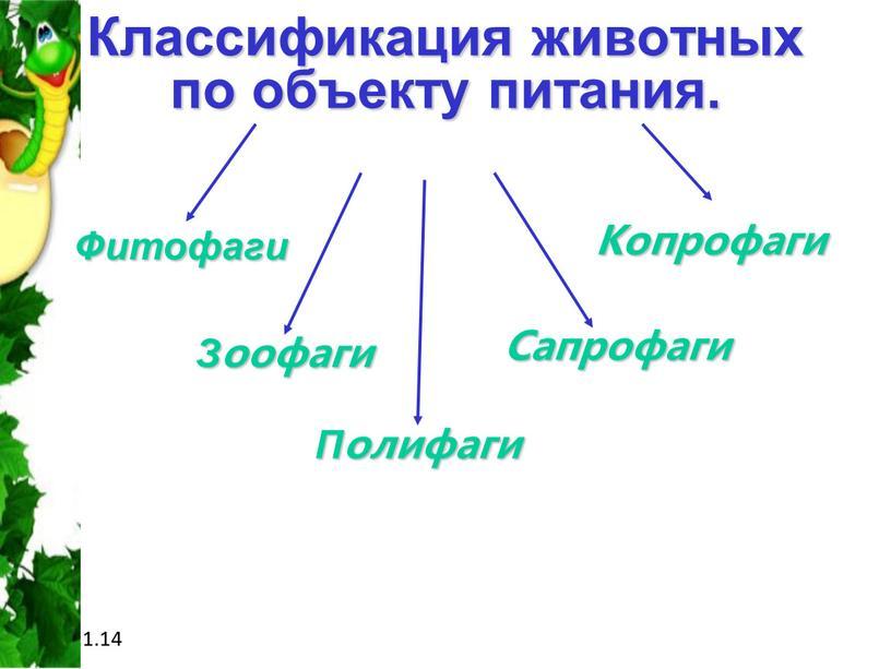 Классификация животных по объекту питания