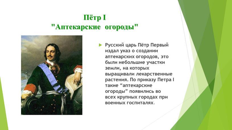 "Пётр I ""Аптекарские огороды"""