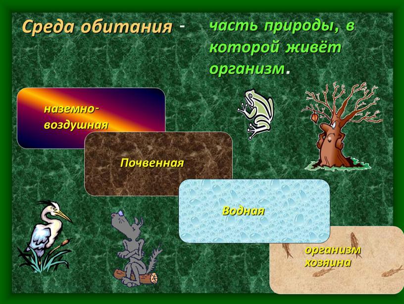 Среда обитания - часть природы, в которой живёт организм