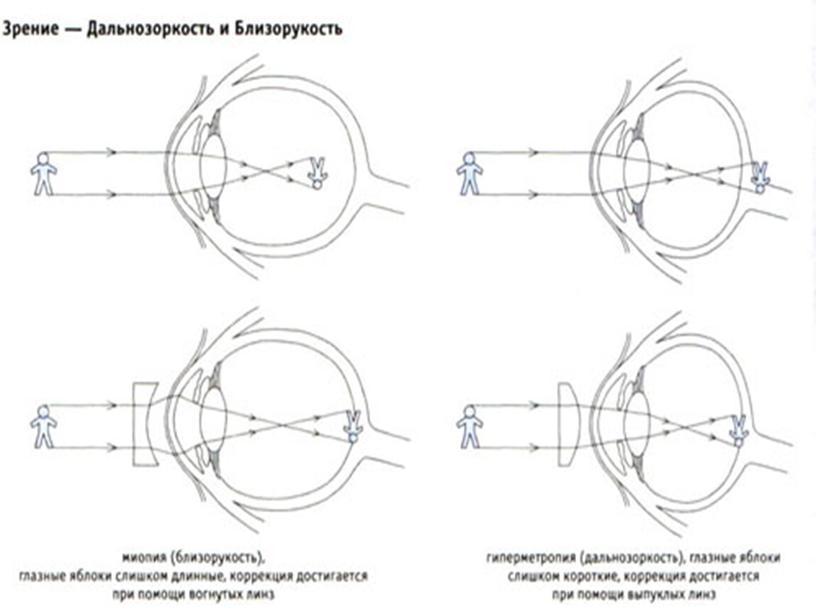 Урок по гигиене зрения