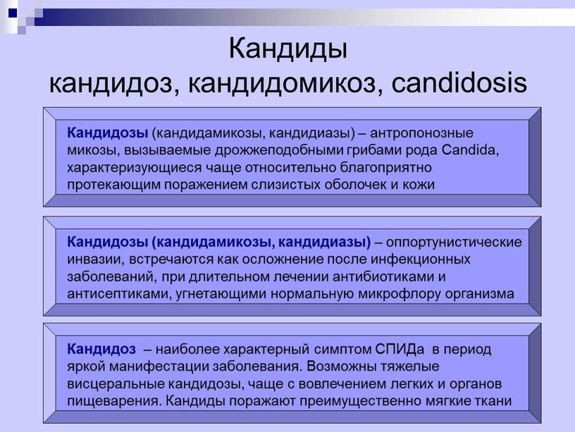 Кандиды кандидоз, кандидомикоз, candidosis