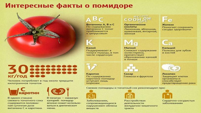 """Исследовательская работа """"Выращивание томата с применением удобрения и рыбы"""""""