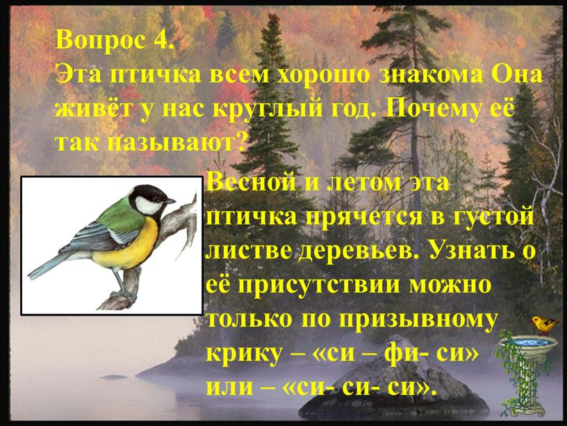 Вопрос 4. Эта птичка всем хорошо знакома