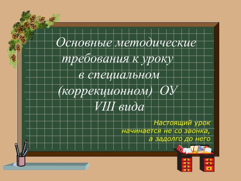 Основные методические требования к уроку в специальном (коррекционном)