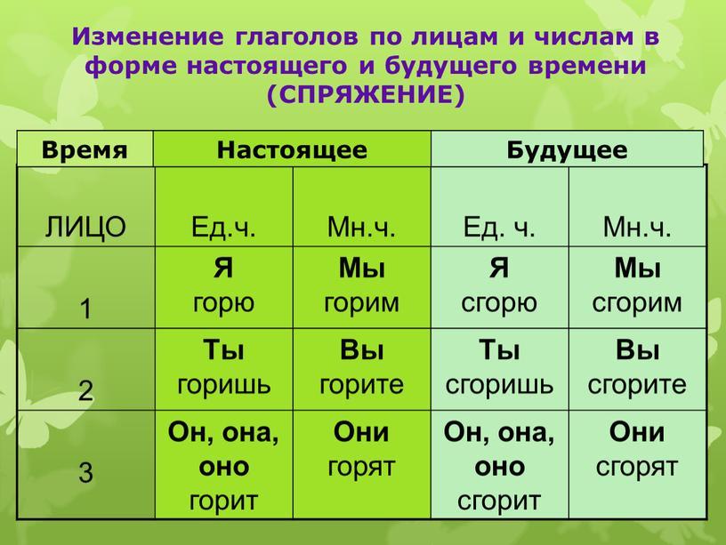 ЛИЦО Ед.ч. Мн.ч. Ед. ч. Мн.ч. 1