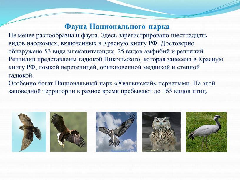 Фауна Национального парка Не менее разнообразна и фауна