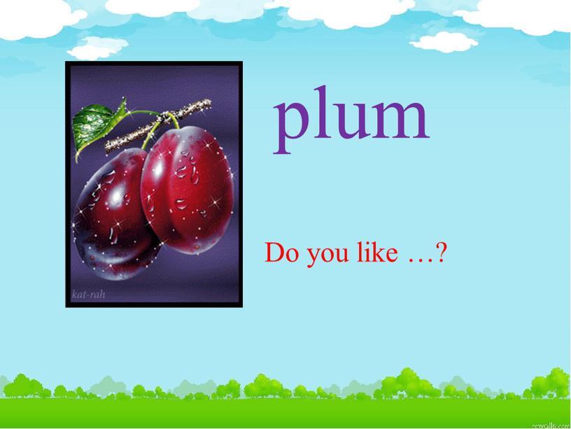 plum Do you like …?