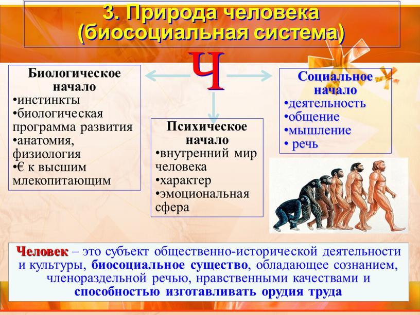 Природа человека (биосоциальная система)
