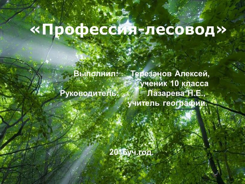 Free Powerpoint Templates «Профессия-лесовод»